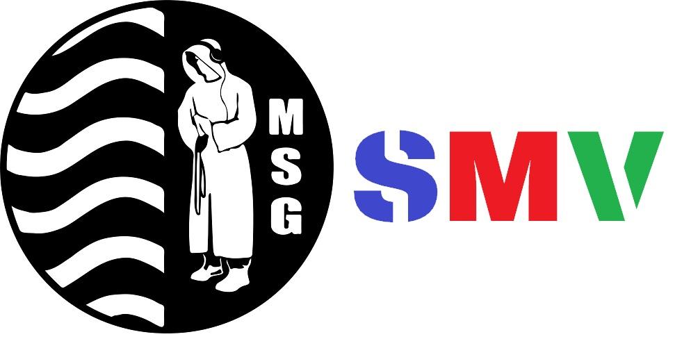 SMV-Wahlen